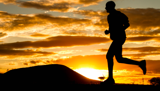 Five Habits of Successful People